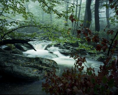 Waterfall, 1979
