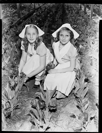 """""""Dutch Girls,"""" probably at Castle Hayne agricultural settlement, circa 1940s"""