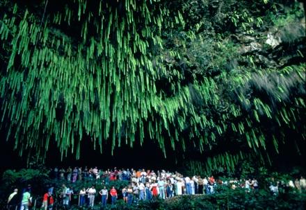 Fern Grotto, Wailua River State Park, Hawaii, 1978