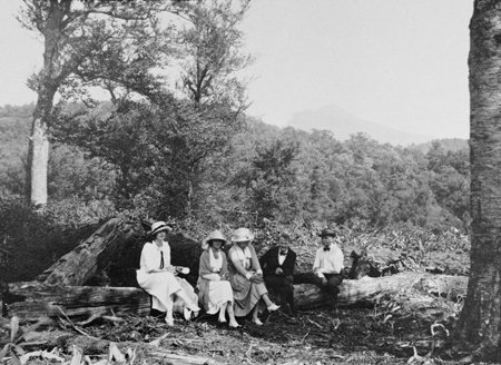 Copy of historic photograph of men and women sitting on fallen tree in or near Linville, NC, from 1890-1920 era.