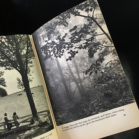 Hugh Morton's photograph published in Look at America: The South.