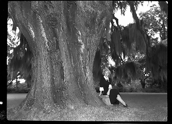 Jacqueline White sitting under the Airlie Oak.