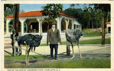lakewoodpark.jpg