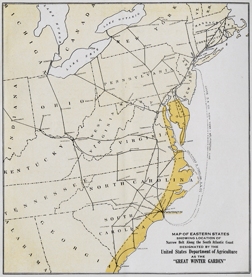 """""""Map of Eastern States showing location of Narrow Belt Along the South Atlantic Coast designated by the United States Department of Agriculture as the """"Great Winter Garden."""""""