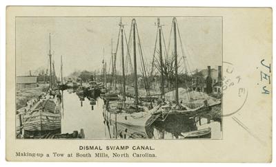 dismalswamp