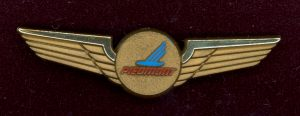 Piedmont wings pin from Lew Powell Collection
