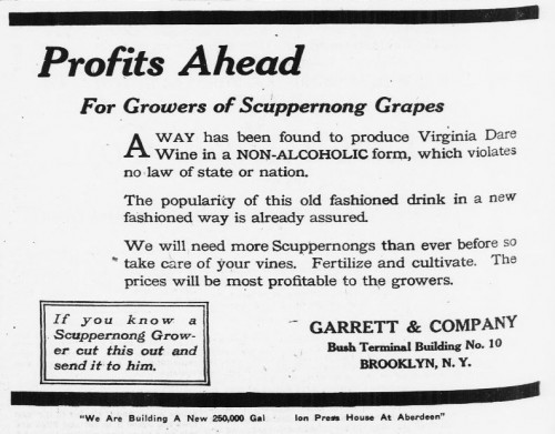 Grape Profits