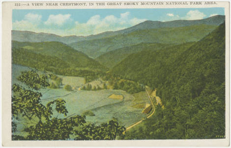 A_View_Near_Crestmont_in_the_Great_Smoky_Mountain_National_Park_area