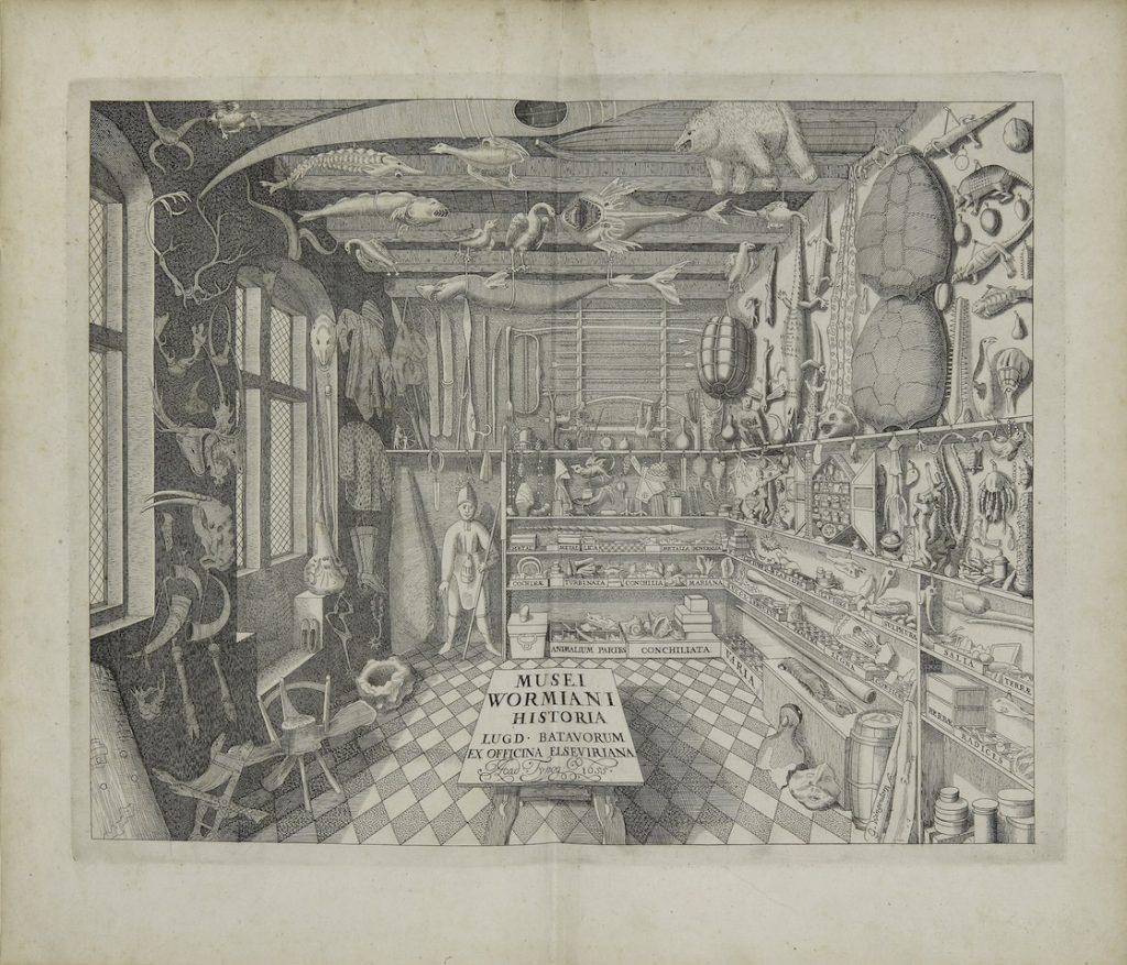 Ole Worm, Museum Wormianum (Leiden, 1655) / Courtesy Florence Fearrington